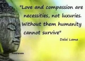 Dalai Lama - you are not special
